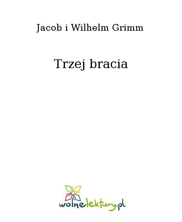 Trzej bracia - Ebook (Książka EPUB) do pobrania w formacie EPUB