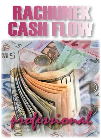 Rachunek Cash-Flow - wersja Professional - Aplikacja do pobrania
