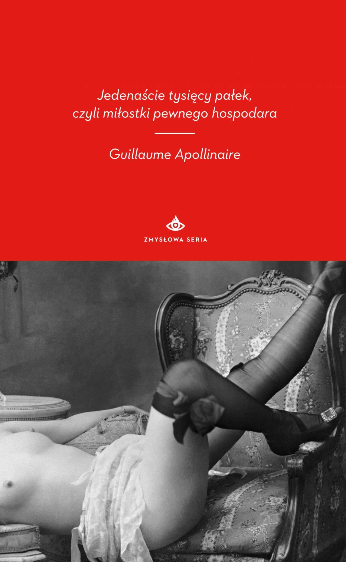 Jedenaście tysięcy pałek, czyli miłostki pewnego hospodara - Ebook (Książka na Kindle) do pobrania w formacie MOBI