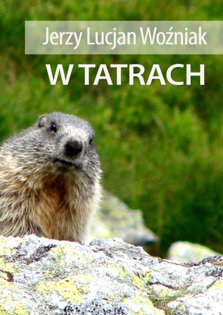 W Tatrach - Ebook (Książka PDF) do pobrania w formacie PDF