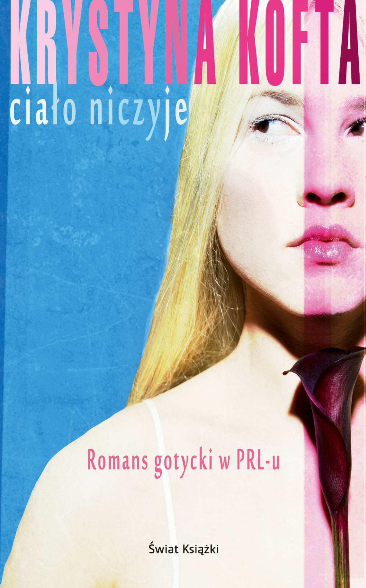 Ciało niczyje - Ebook (Książka EPUB) do pobrania w formacie EPUB