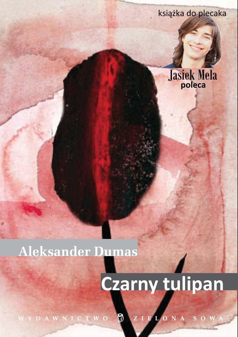 Czarny tulipan - Ebook (Książka na Kindle) do pobrania w formacie MOBI