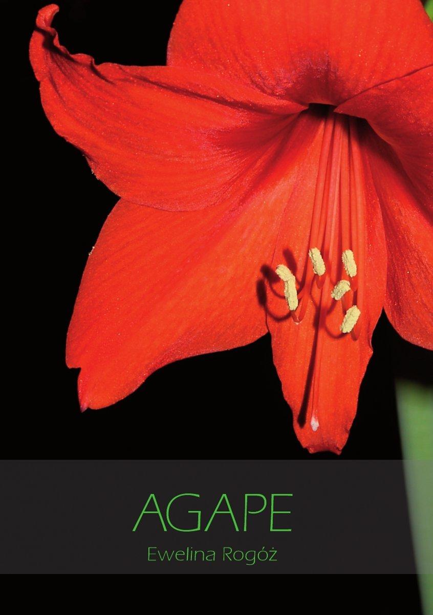 Agape - Ebook (Książka EPUB) do pobrania w formacie EPUB