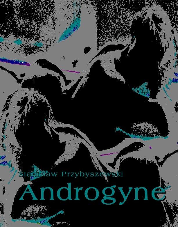 Androgyne - Ebook (Książka EPUB) do pobrania w formacie EPUB