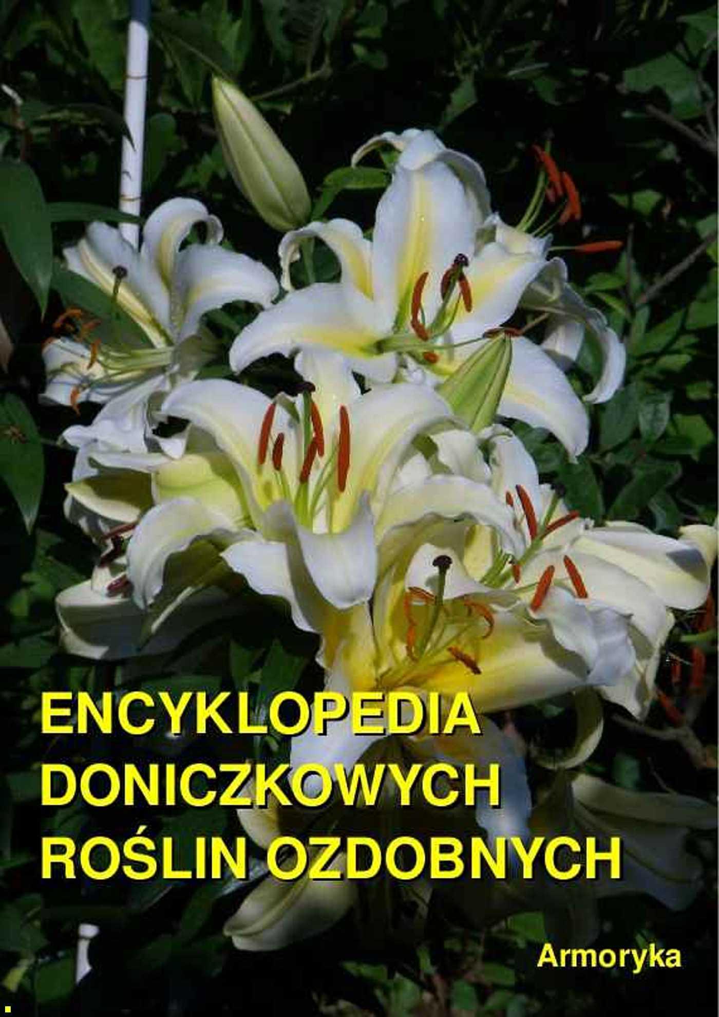 Encyklopedia doniczkowych roślin ozdobnych - Ebook (Książka EPUB) do pobrania w formacie EPUB