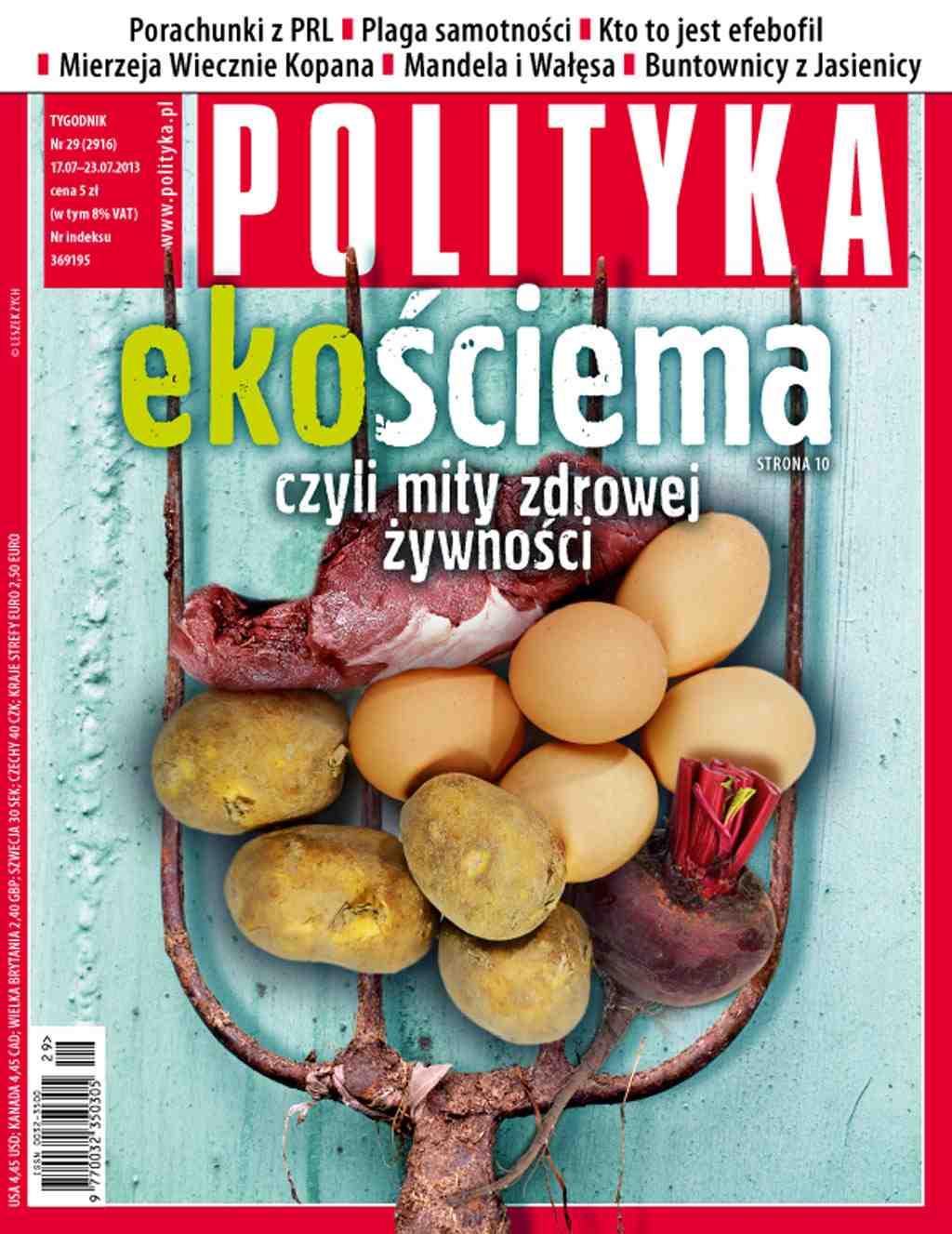 Polityka nr 29/2013 - Ebook (Książka PDF) do pobrania w formacie PDF