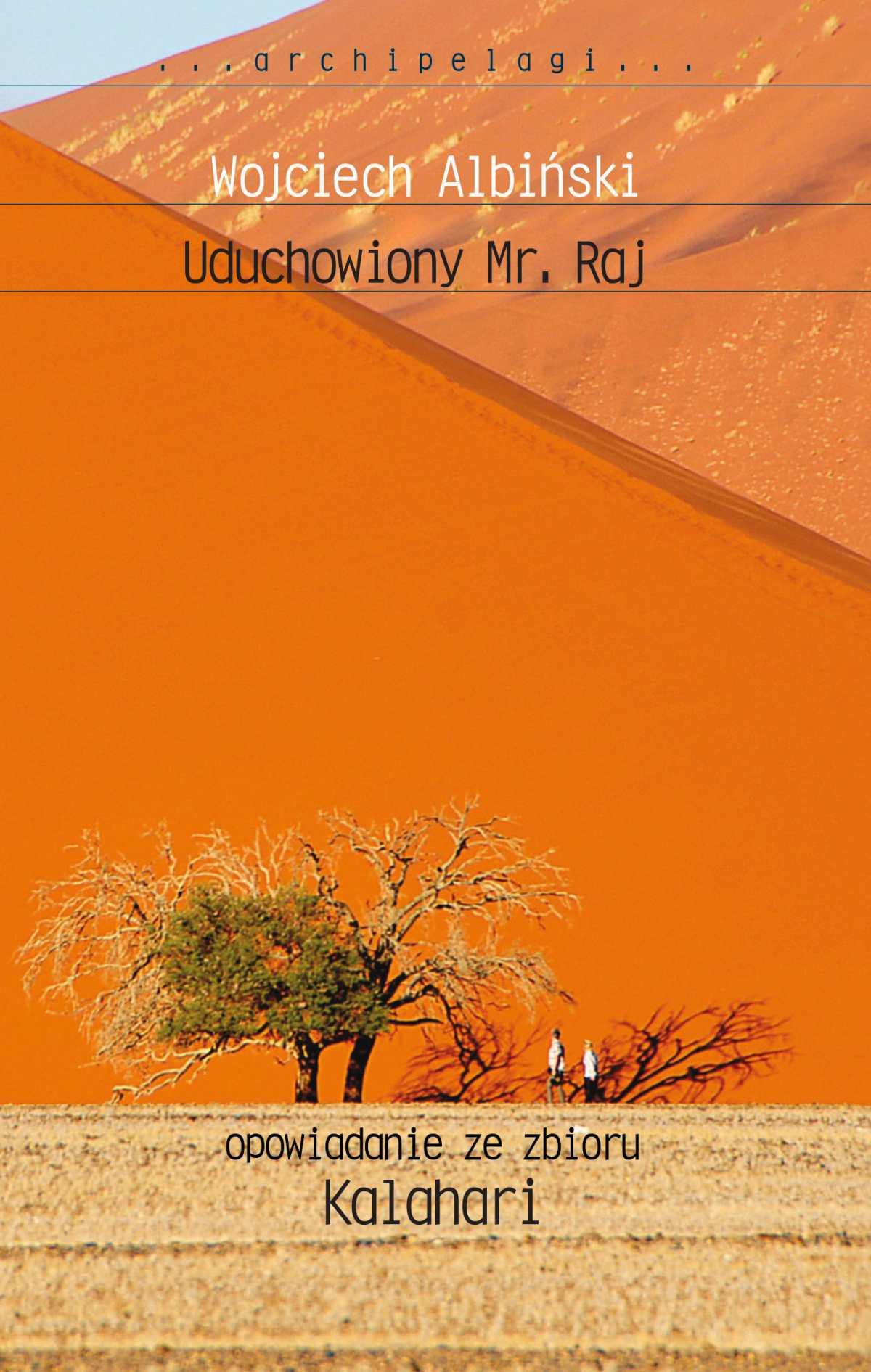 Uduchowiony Mr. Raj - Ebook (Książka EPUB) do pobrania w formacie EPUB