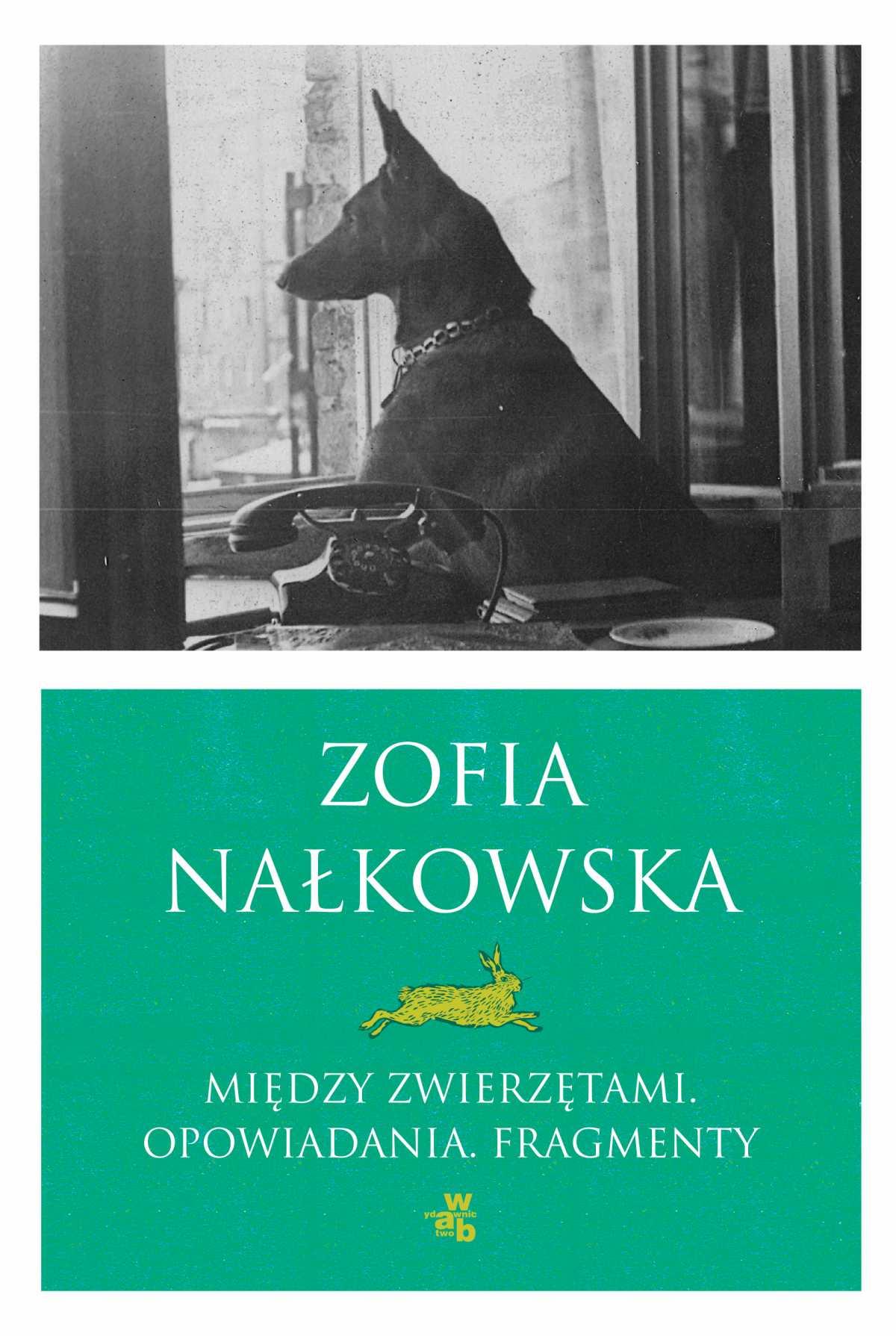 Między zwierzętami. Opowiadania i fragmenty - Ebook (Książka EPUB) do pobrania w formacie EPUB