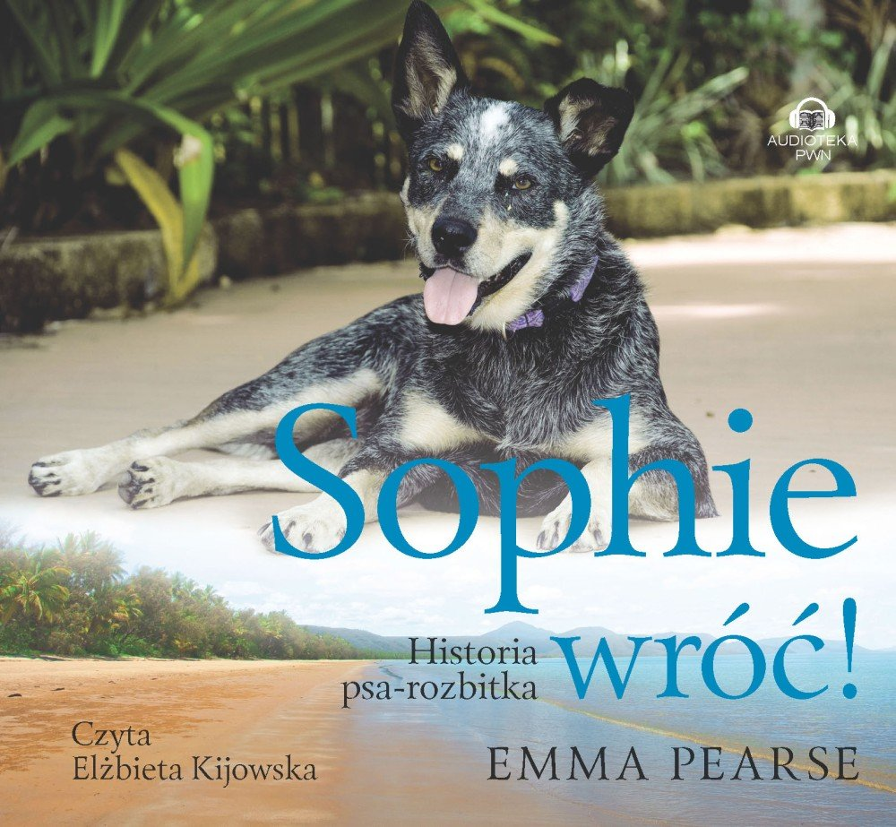 Sophie wróć! - Audiobook (Książka audio MP3) do pobrania w całości w archiwum ZIP