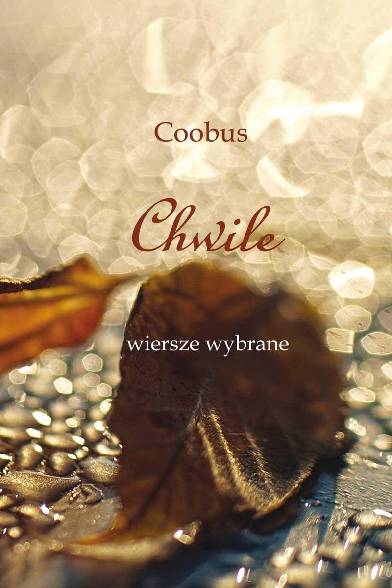 Chwile - Ebook (Książka EPUB) do pobrania w formacie EPUB