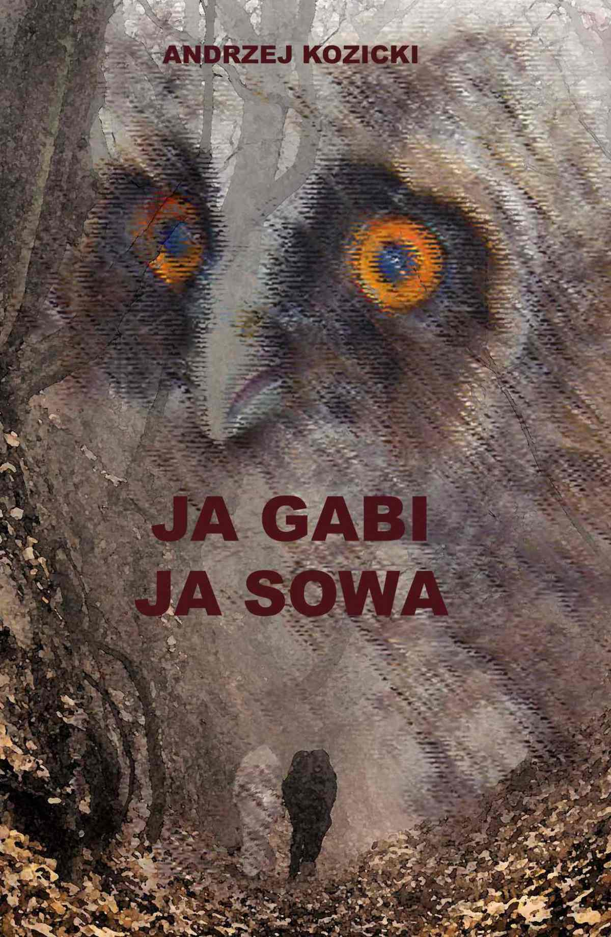 Ja Gabi, ja Sowa - ebook