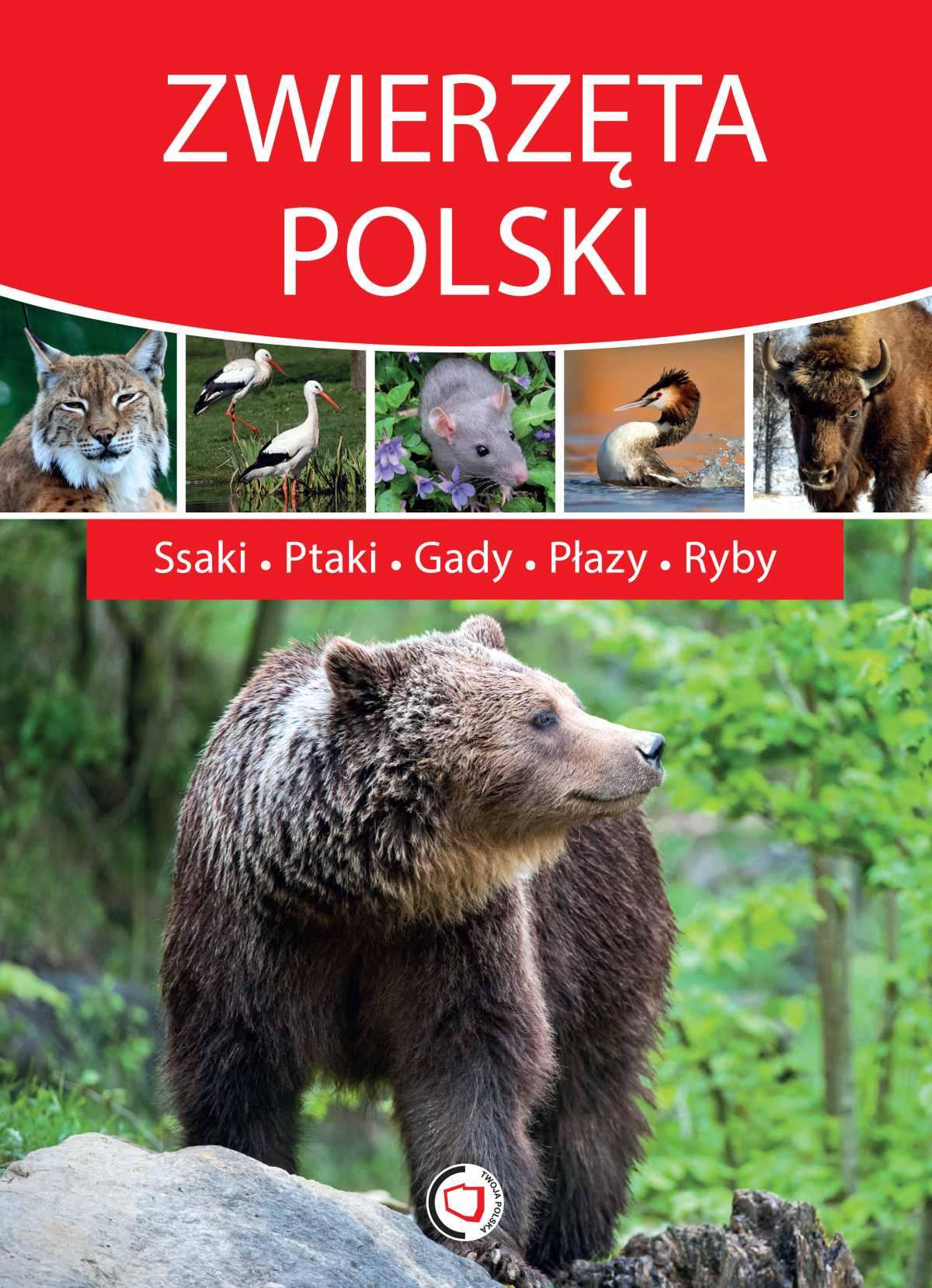 Zwierzęta Polski - Ebook (Książka PDF) do pobrania w formacie PDF