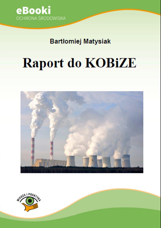 Raport do KOBiZE - Ebook (Książka PDF) do pobrania w formacie PDF