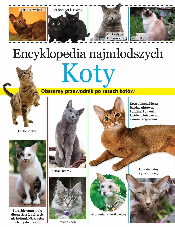 Encyklopedia najmłodszych. Koty - Ebook (Książka PDF) do pobrania w formacie PDF