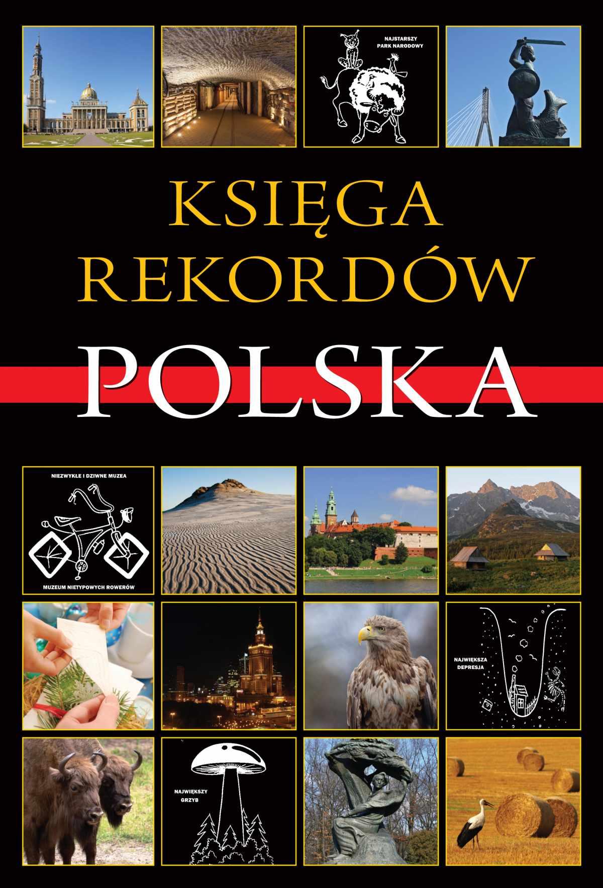 Księga rekordów. Polska - Ebook (Książka na Kindle) do pobrania w formacie MOBI