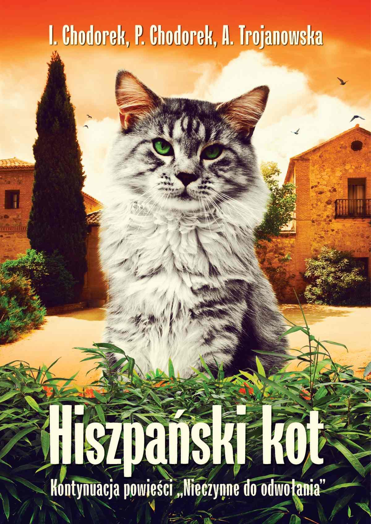 Hiszpański kot - Ebook (Książka EPUB) do pobrania w formacie EPUB