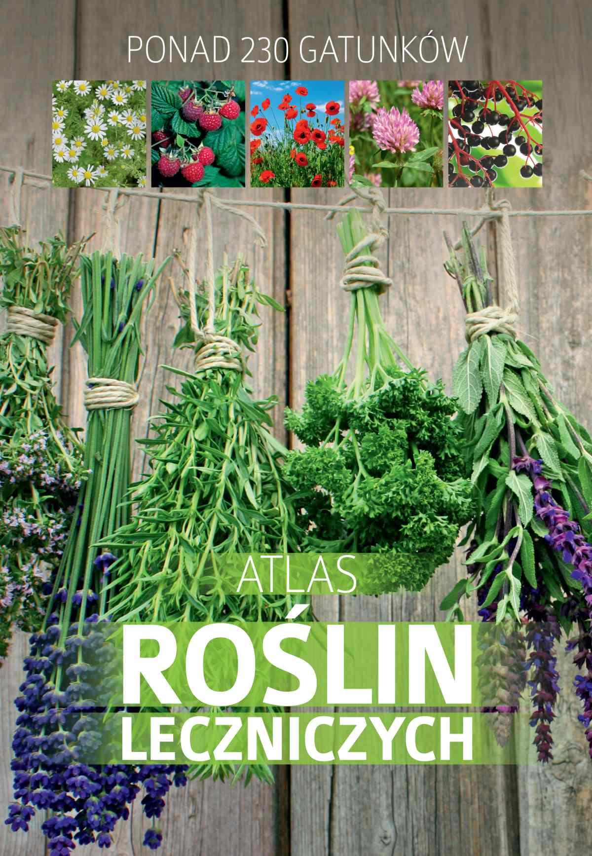 Atlas roślin leczniczych. Ponad 230 gatunków - Ebook (Książka PDF) do pobrania w formacie PDF