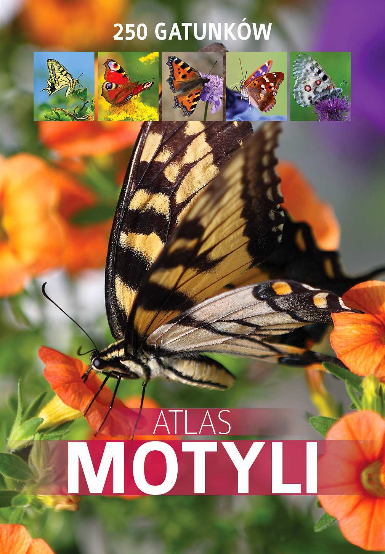 Atlas motyli. 250 gatunków - Ebook (Książka PDF) do pobrania w formacie PDF