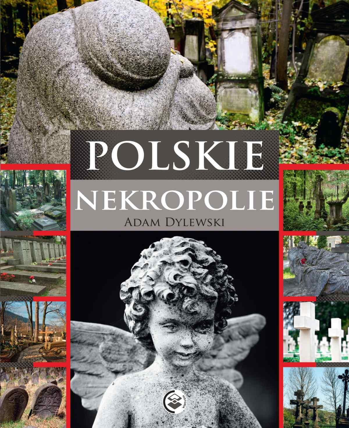 Polskie nekropolie - Ebook (Książka PDF) do pobrania w formacie PDF