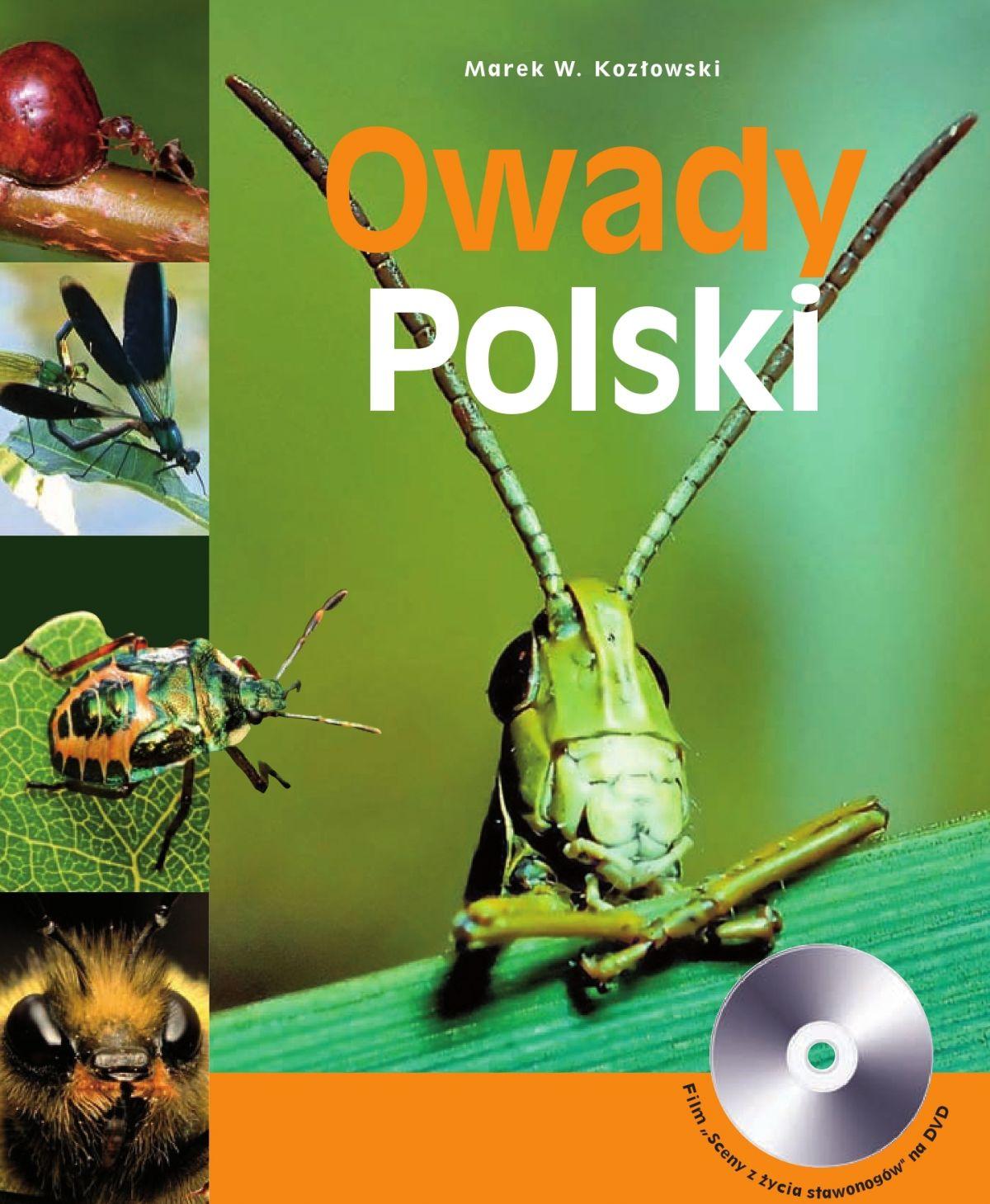 Owady Polski - Ebook (Książka PDF) do pobrania w formacie PDF