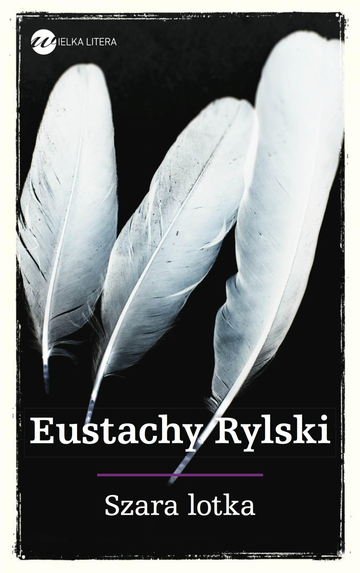 Szara lotka - Ebook (Książka EPUB) do pobrania w formacie EPUB