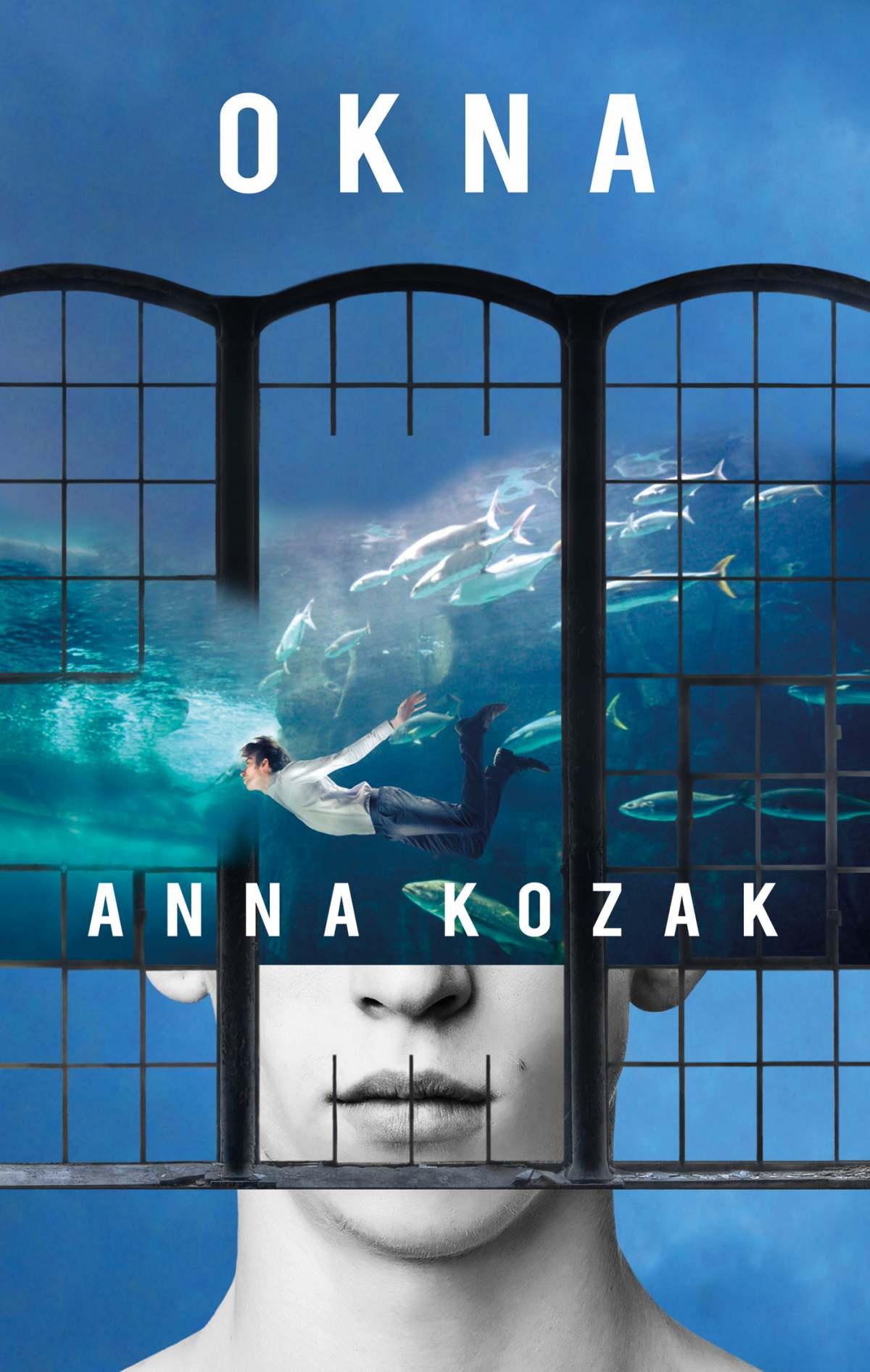 Okna - Ebook (Książka EPUB) do pobrania w formacie EPUB