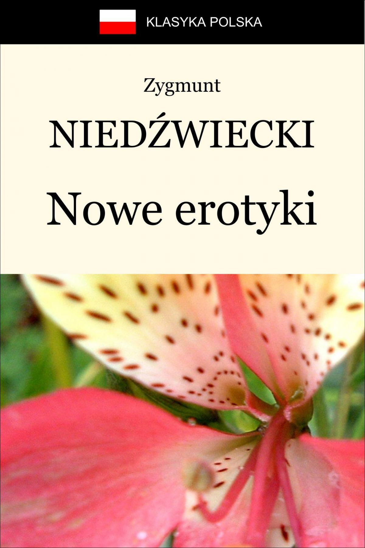 Nowe erotyki - Ebook (Książka EPUB) do pobrania w formacie EPUB