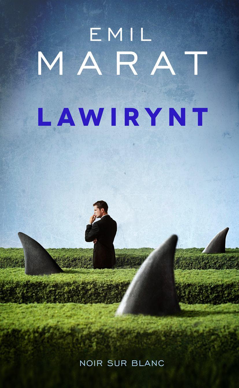 Lawirynt - Ebook (Książka EPUB) do pobrania w formacie EPUB