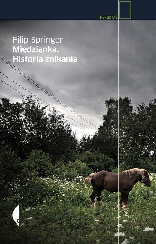 Miedzianka. Historia znikania - Ebook (Książka na Kindle) do pobrania w formacie MOBI