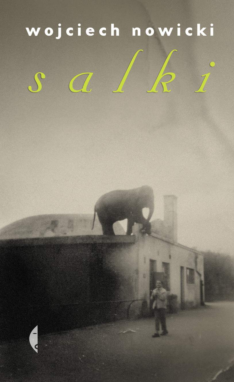 Salki - Ebook (Książka na Kindle) do pobrania w formacie MOBI