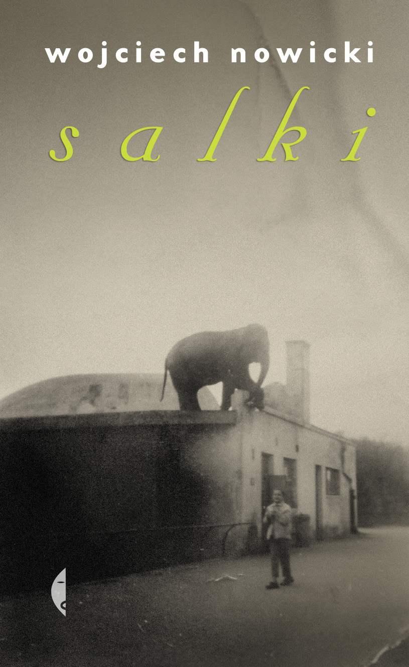 Salki - Ebook (Książka EPUB) do pobrania w formacie EPUB