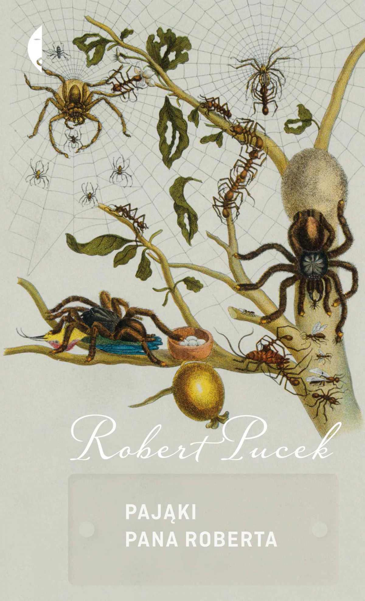 Pająki pana Roberta - Ebook (Książka na Kindle) do pobrania w formacie MOBI