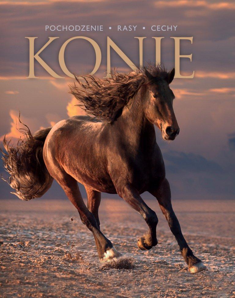 Konie. Pochodzenie, rasy, cechy - Ebook (Książka PDF) do pobrania w formacie PDF