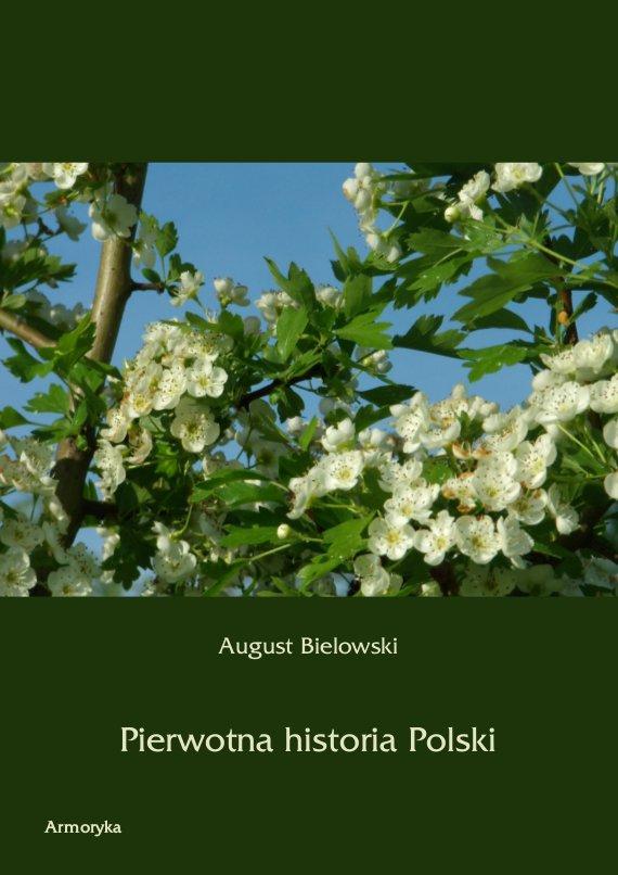 Pierwotna historia Polski - Ebook (Książka PDF) do pobrania w formacie PDF