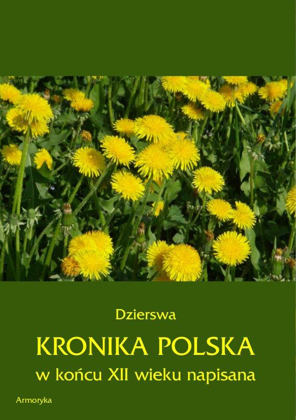 Kronika polska Dzierswy (Dzierzwy) - Ebook (Książka PDF) do pobrania w formacie PDF