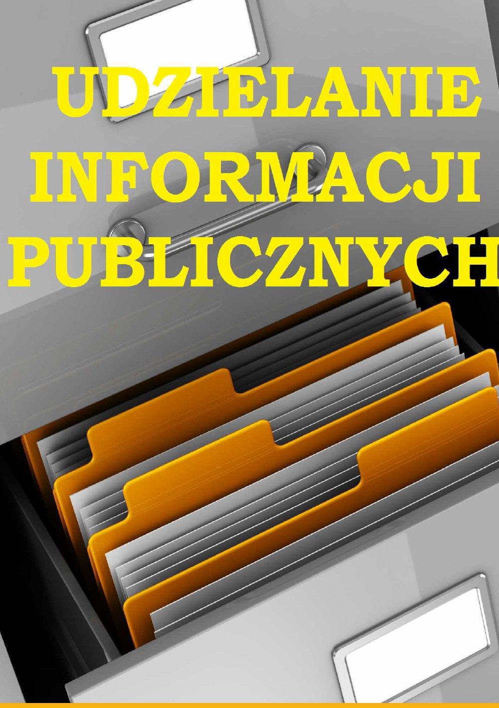 Udzielanie informacji publicznych - Ebook (Książka PDF) do pobrania w formacie PDF