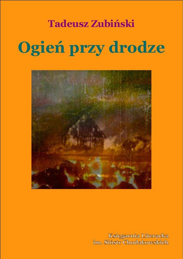 Ogień przy drodze - Ebook (Książka na Kindle) do pobrania w formacie MOBI