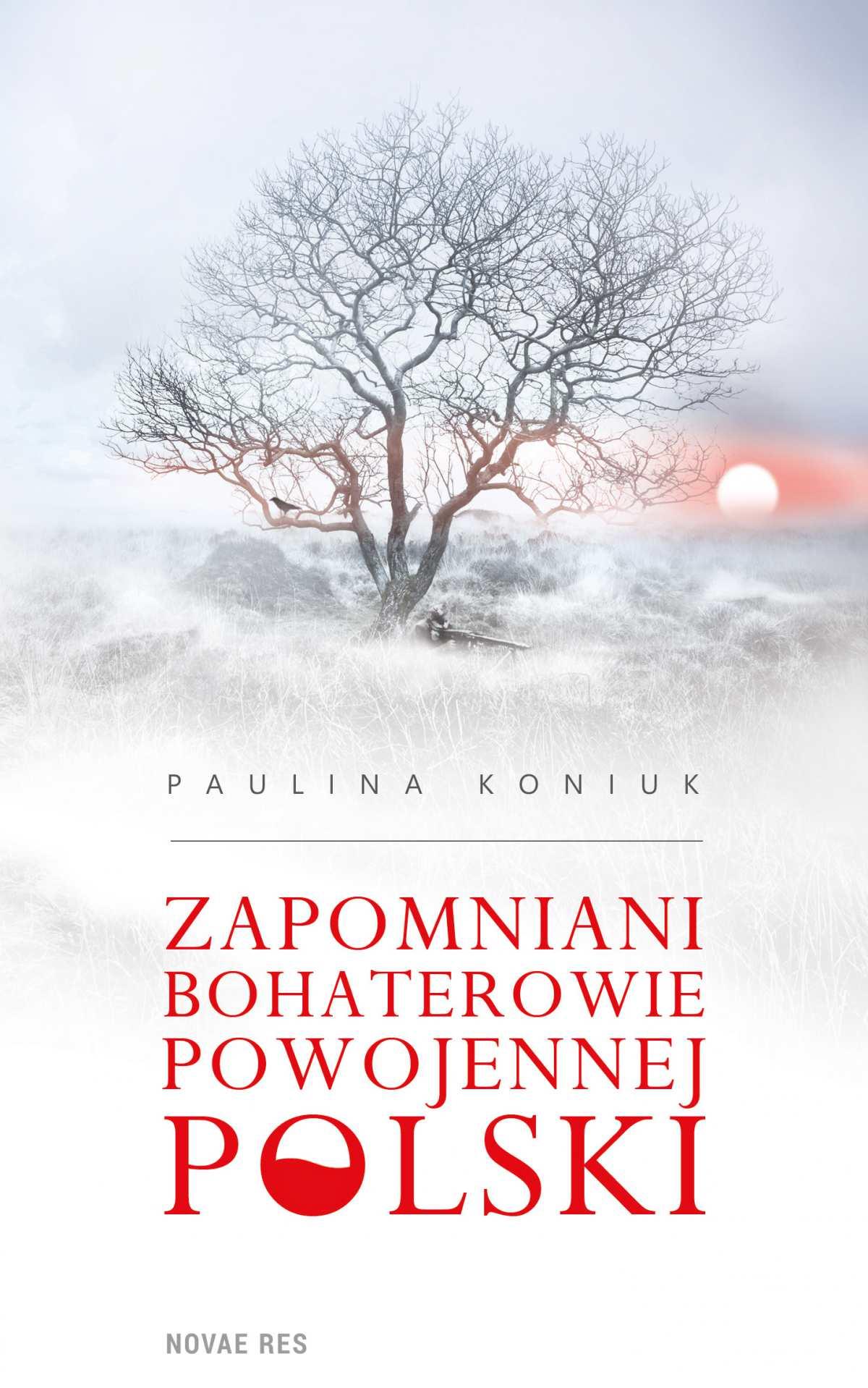 Zapomniani bohaterowie powojennej Polski - Ebook (Książka EPUB) do pobrania w formacie EPUB