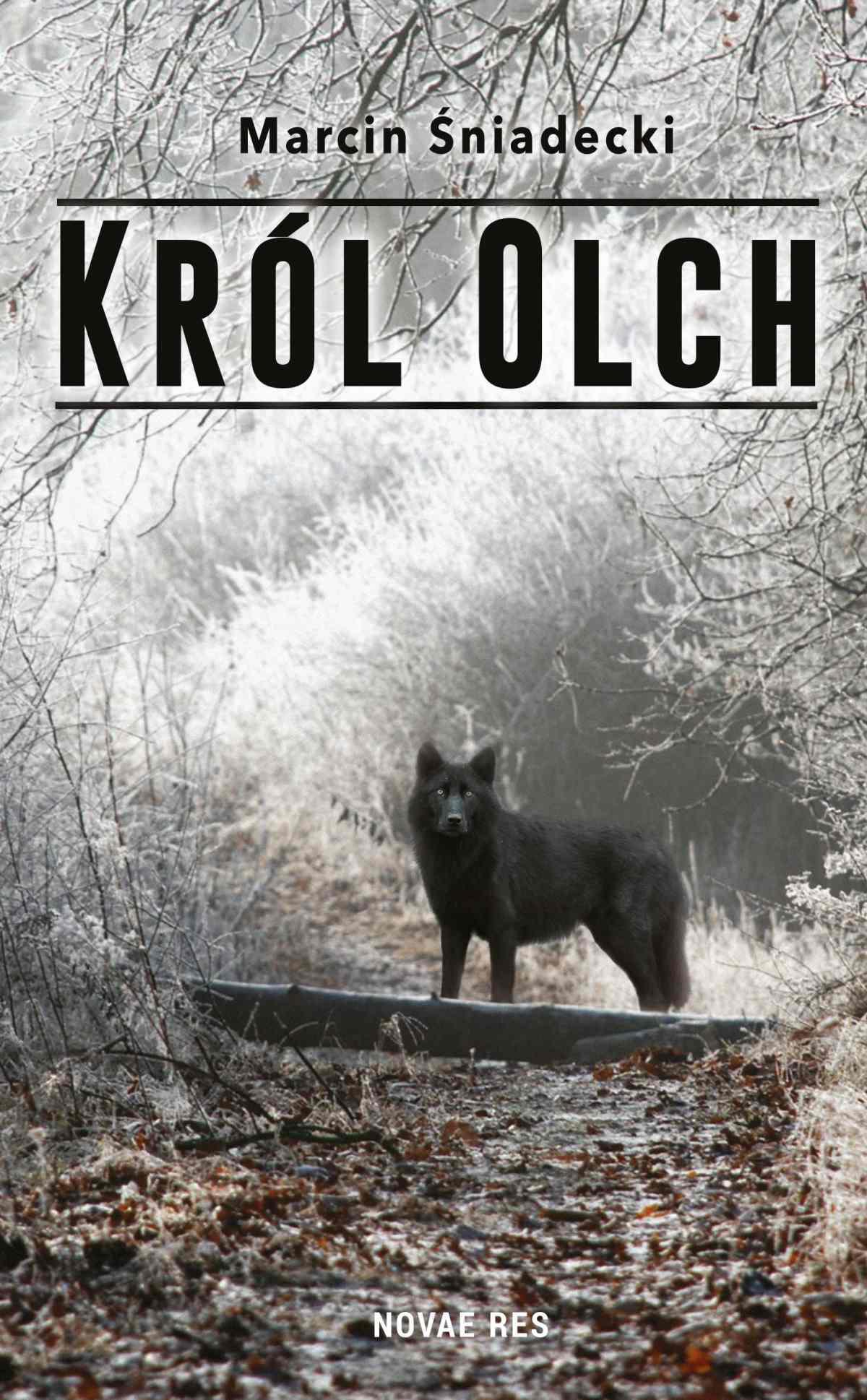Król Olch - Ebook (Książka na Kindle) do pobrania w formacie MOBI