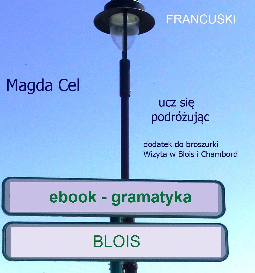 Francuski, ucz się podróżując – Blois. Gramatyka. - Ebook (Książka EPUB) do pobrania w formacie EPUB