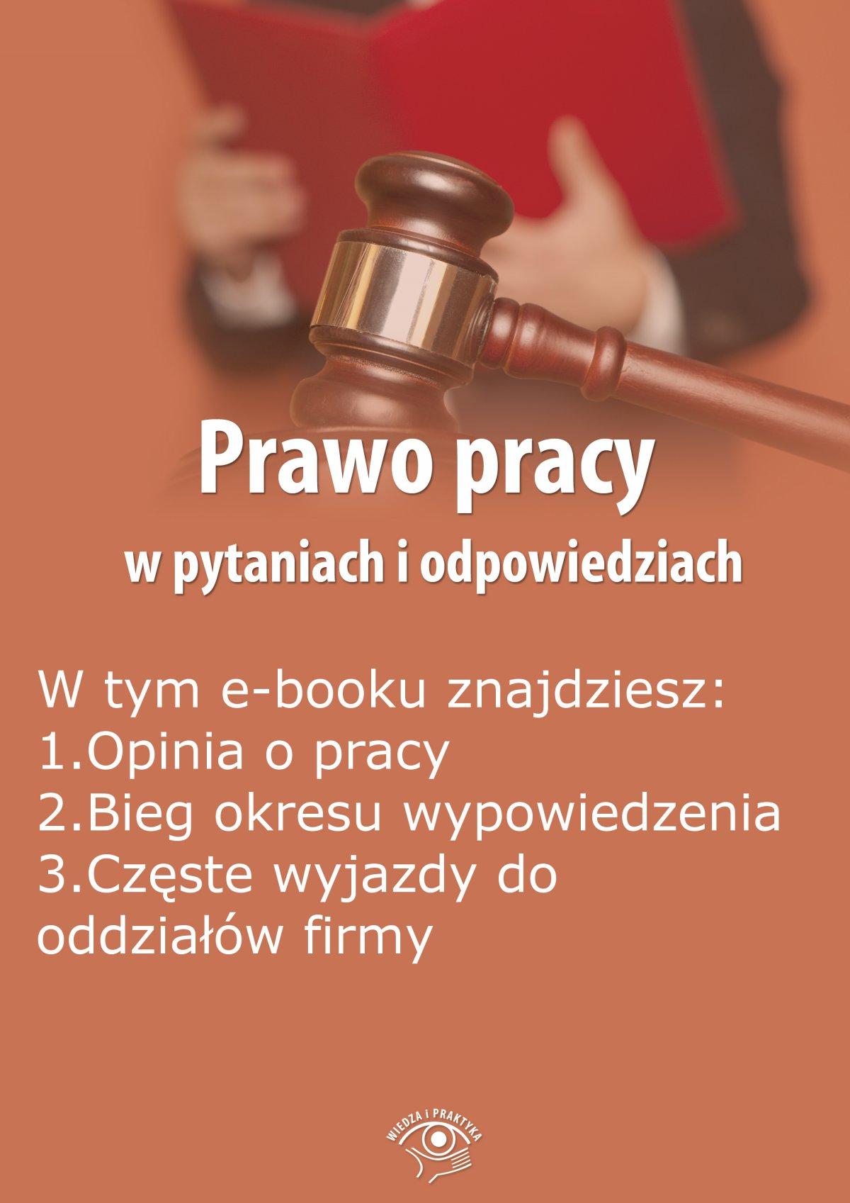 Prawo pracy w pytaniach i odpowiedziach, wydanie lipiec-sierpień 2015 r. - Ebook (Książka PDF) do pobrania w formacie PDF