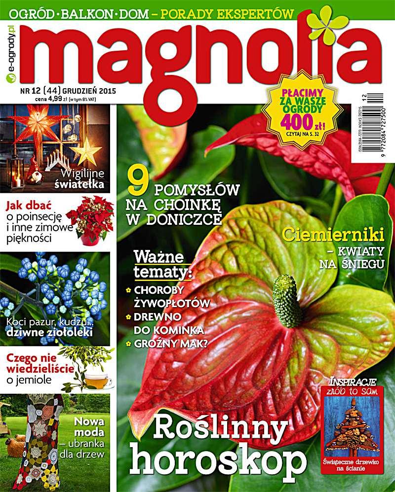 Magnolia 12/2015 - Ebook (Książka PDF) do pobrania w formacie PDF