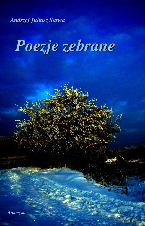 Poezje zebrane - Ebook (Książka PDF) do pobrania w formacie PDF