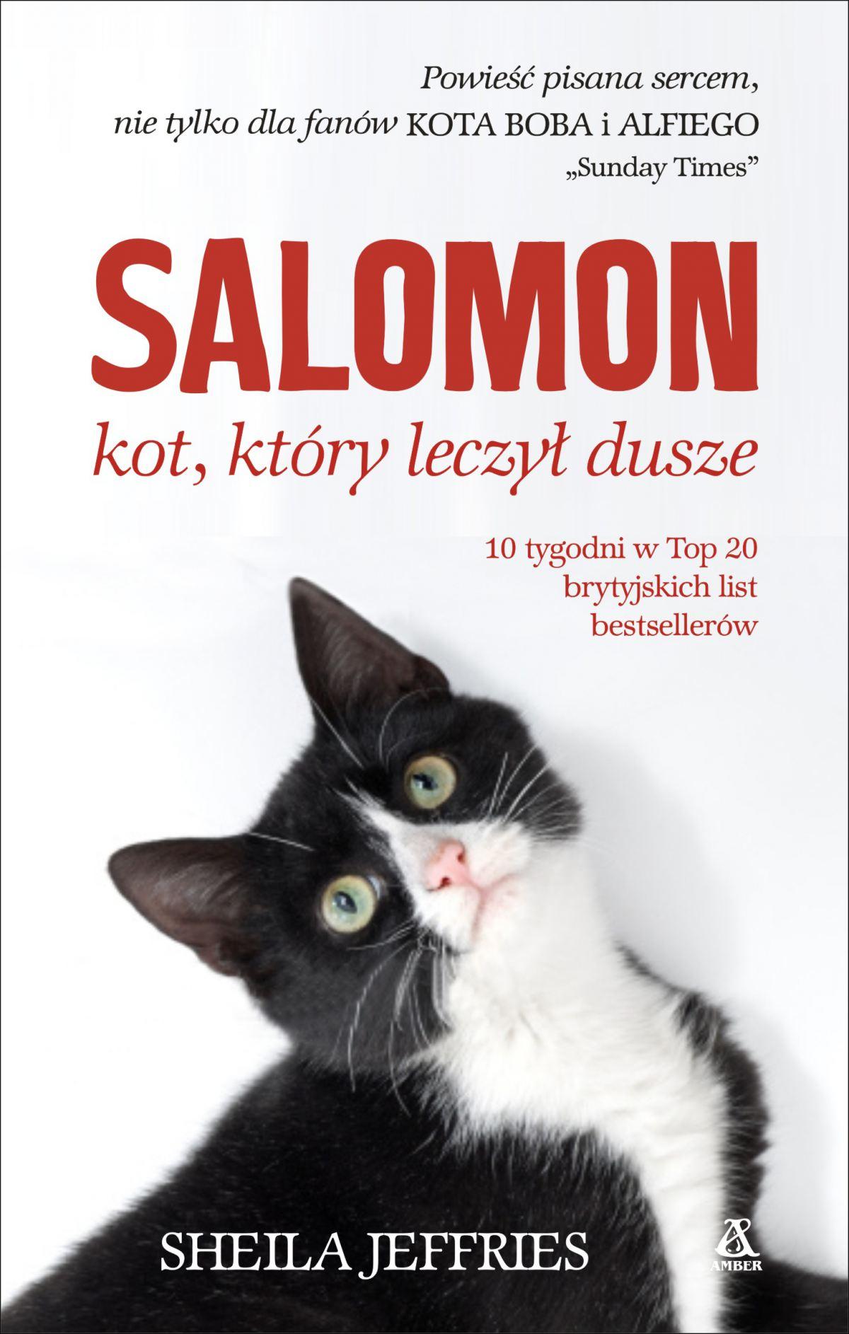 Salomon - kot, który leczył dusze - Ebook (Książka EPUB) do pobrania w formacie EPUB