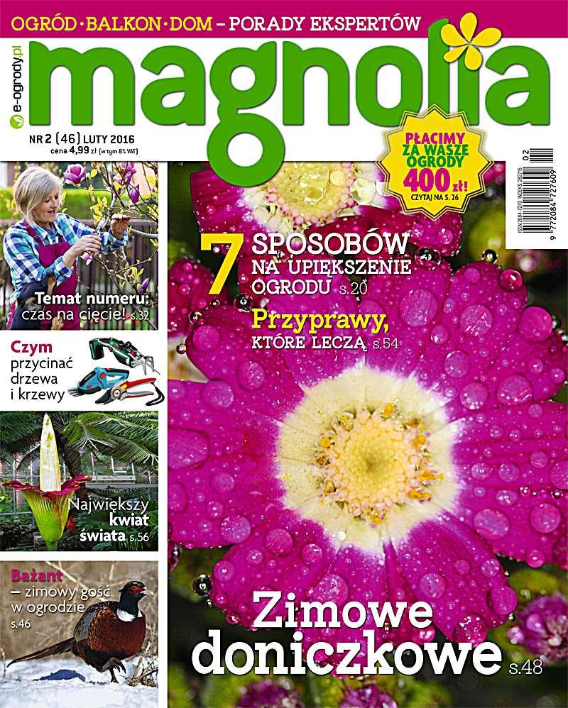 Magnolia 2/2016 - Ebook (Książka PDF) do pobrania w formacie PDF