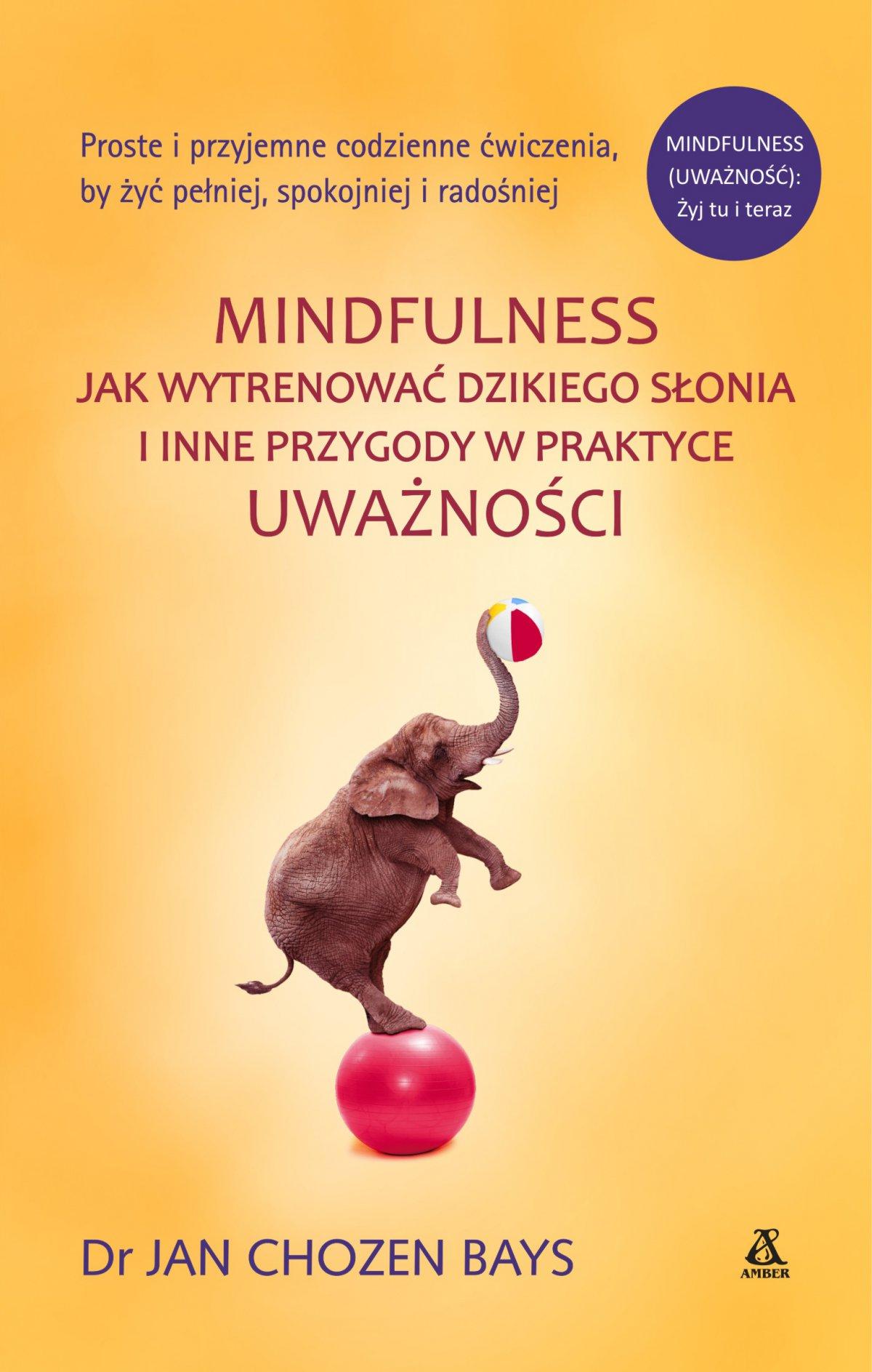 Mindfulness: Jak wytrenować dzikiego słonia - Ebook (Książka EPUB) do pobrania w formacie EPUB