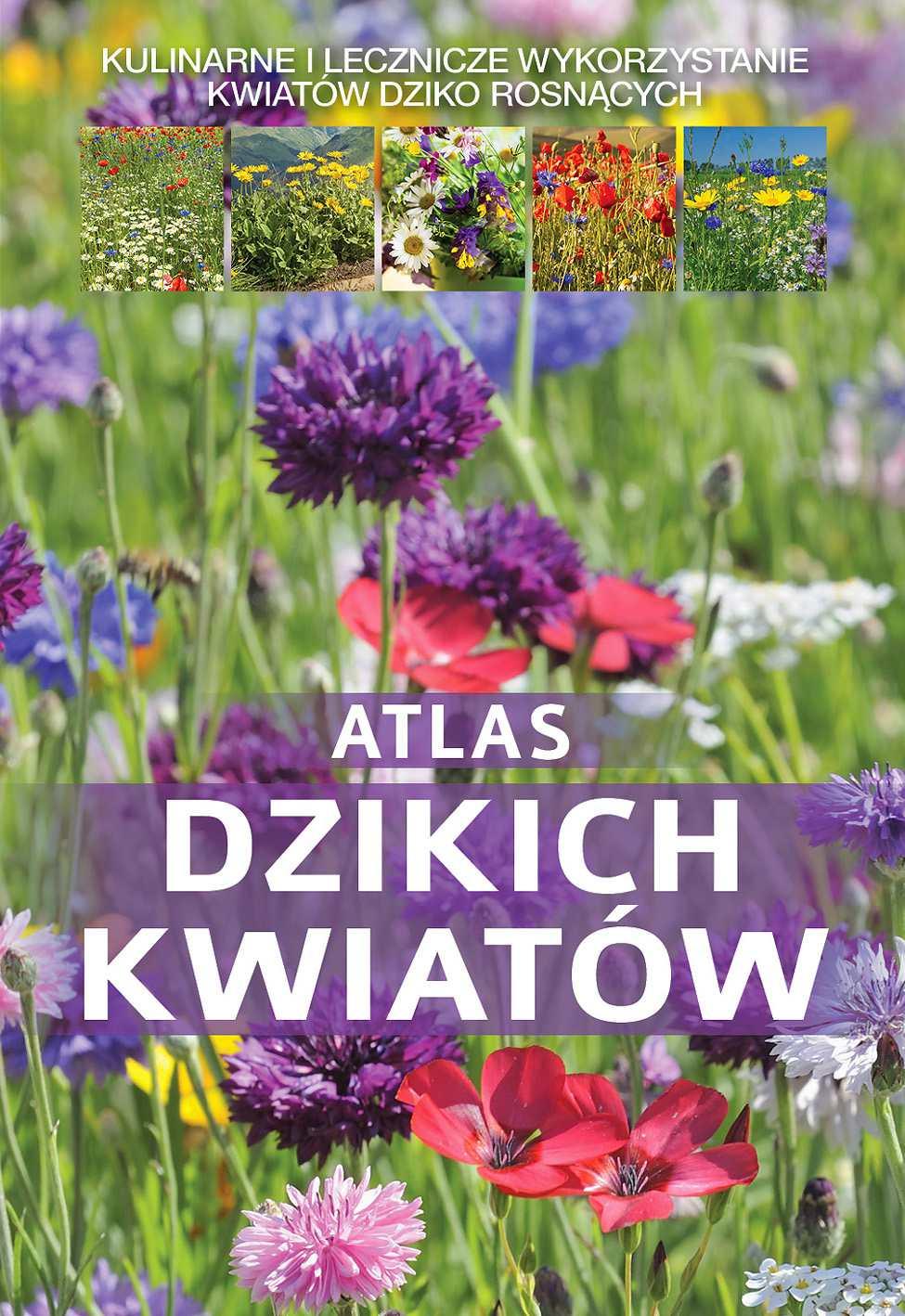 Atlas dzikich kwiatów - Ebook (Książka PDF) do pobrania w formacie PDF
