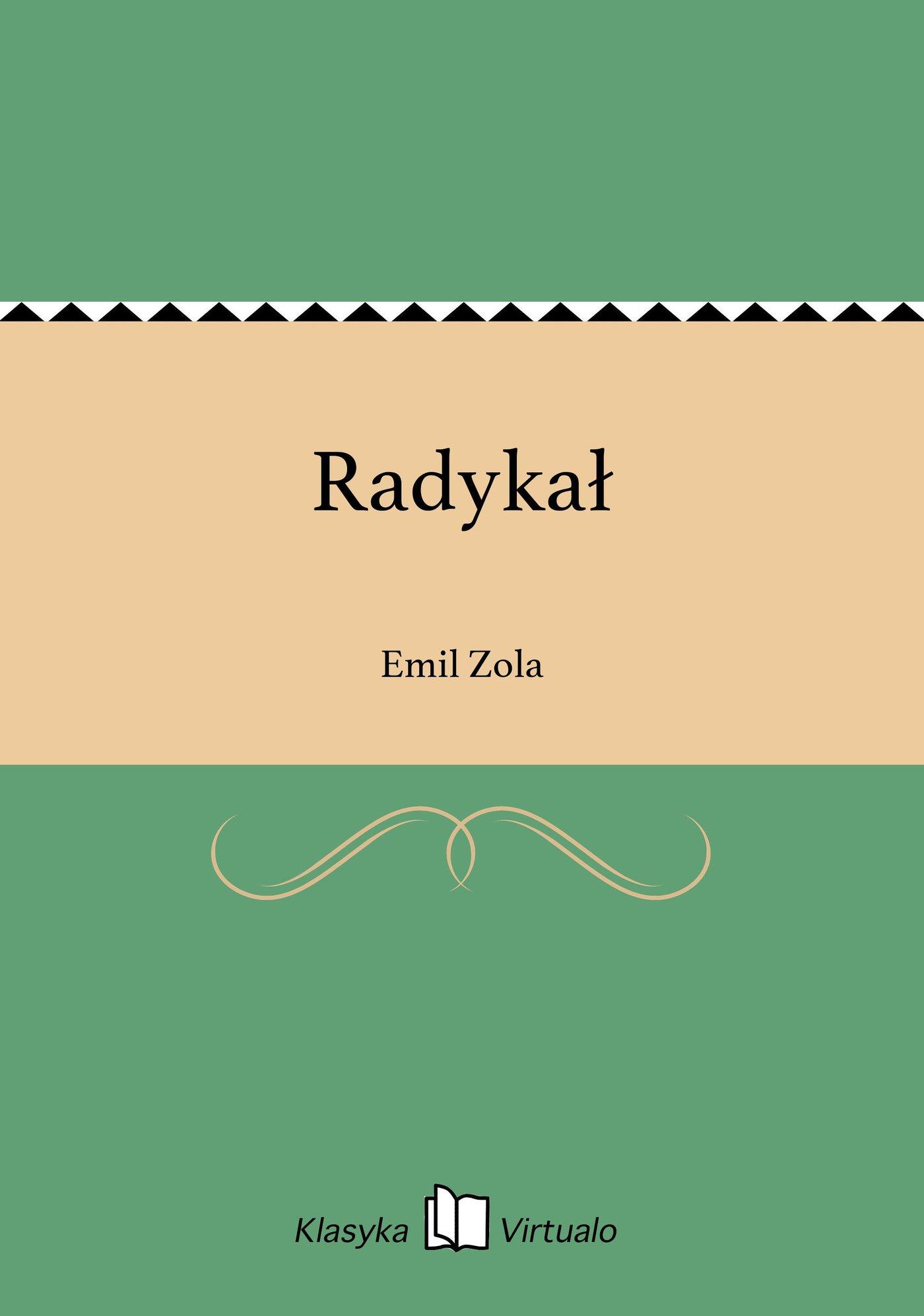 Radykał - Ebook (Książka na Kindle) do pobrania w formacie MOBI