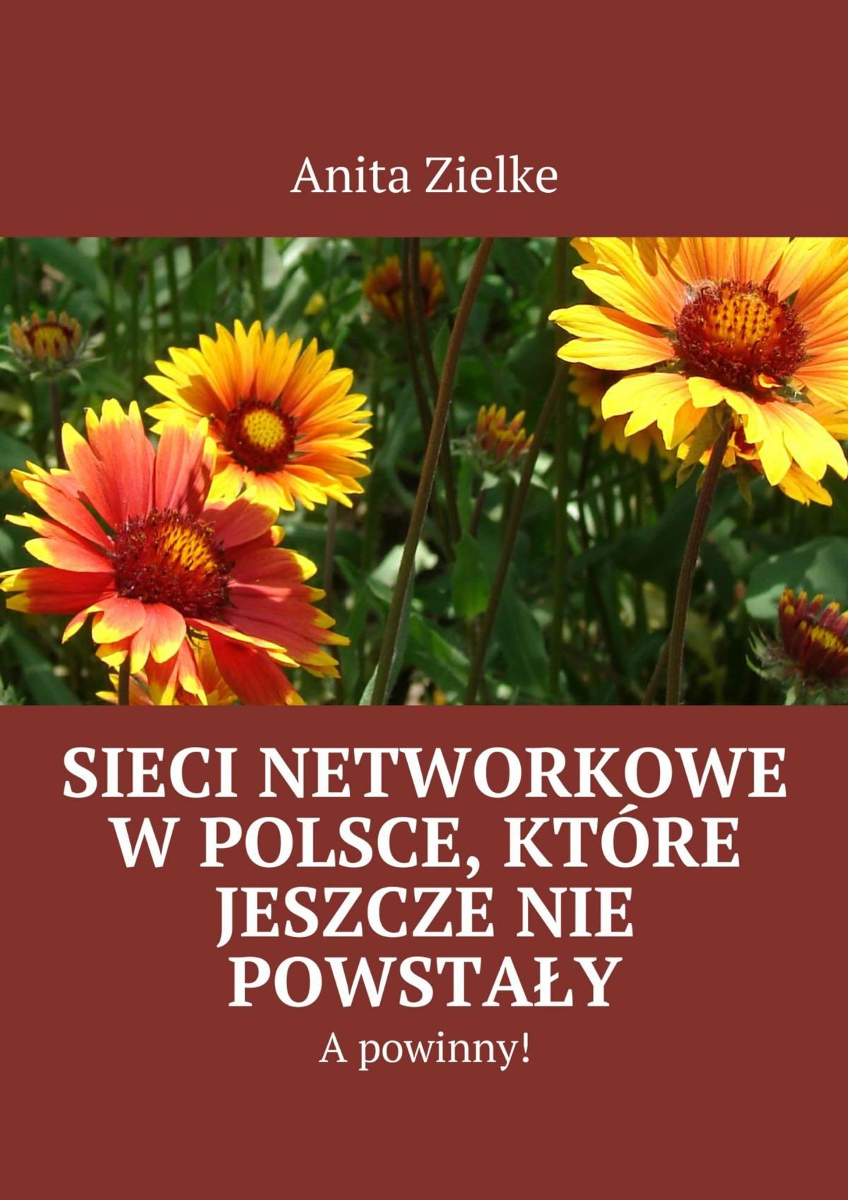 Sieci networkowe w Polsce, które jeszcze nie powstały, a powinny! - Ebook (Książka EPUB) do pobrania w formacie EPUB
