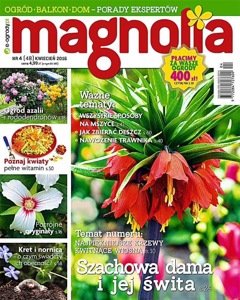Magnolia 4/2016 - Ebook (Książka PDF) do pobrania w formacie PDF